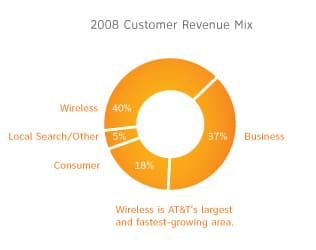 Customer Revenue Mix