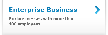 Enterprise Business: for businesses with more than 100 employees.