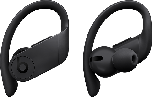 Image result for Beats Powerbeats Pro Totally Wireless Earphones