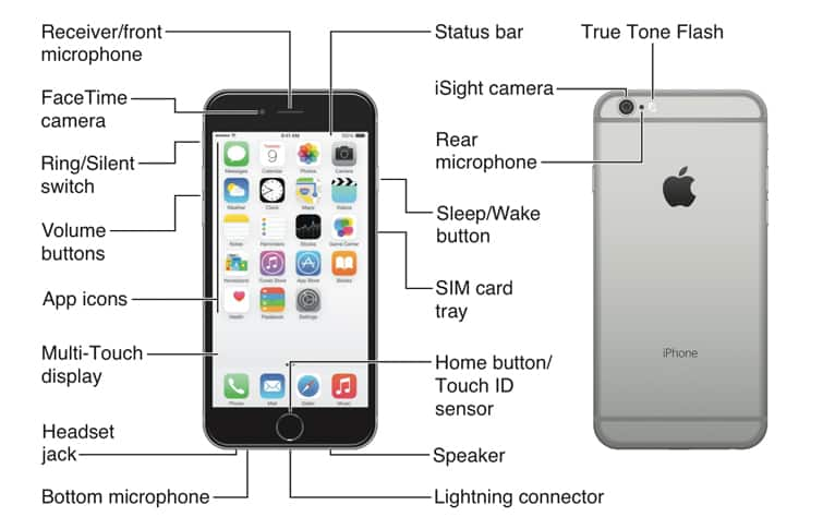 Apple iPhone 6 Diagram - AT&T Device Support