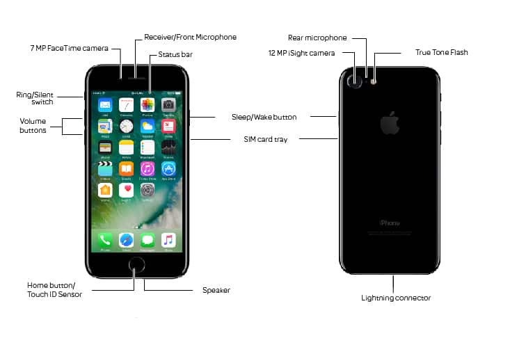 Apple iPhone 7 Diagram - AT&T Device Support
