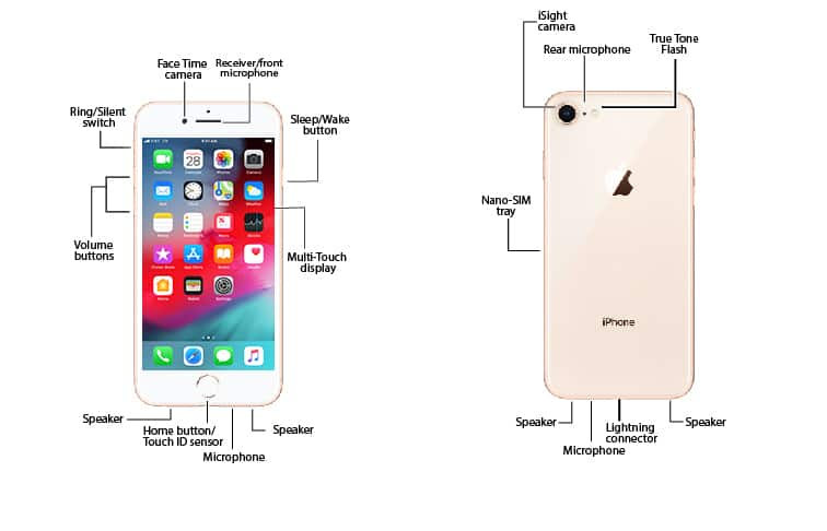 Apple Iphone 8    8 Plus Diagram