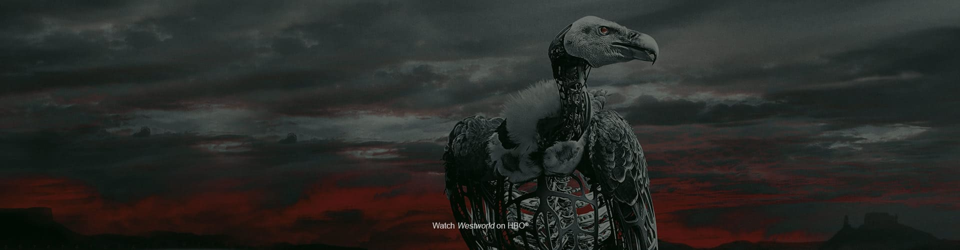 Watch Westworld on HBO®